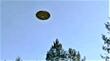 8-15-21 PINELANDS BURLINGTON COUNTY NEW JERSEY --MUFON--VIDEO.jpg