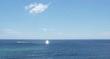 9-2-19 GULF SHORES ALABAMA--MUFON--PIC 1.jpg