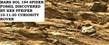 MARS SOL 194 SPIDER FOSSIL DISCOVERED BY KEN PFEIFER 10-11-20 CURIOSITY ROVER(1).jpg