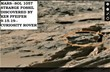 MARS--SOL 1057--STRANGE FOSSIL DISCOVEED BY KEN PFEIFER 9-15-19--CURIOSITY ROVER.jpg