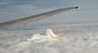 TOP 200--8-13 11 --FLIGHT FROM BUDAPEST TO LONDON--MUFON.jpg