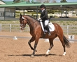 DRESSAGE FOR CURE 2018 1005.jpg
