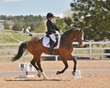 DRESSAGE FOR CURE 2018 1010.jpg