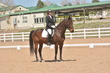 DRESSAGE FOR CURE 2018 1144.jpg