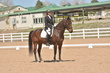 DRESSAGE FOR CURE 2018 1145.jpg