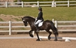 DRESSAGE FOR CURE 2018 1398.jpg