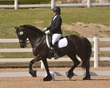 DRESSAGE FOR CURE 2018 1400.jpg