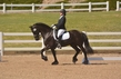 DRESSAGE FOR CURE 2018 1404.jpg
