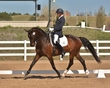 DRESSAGE FOR CURE 2018 1423.jpg