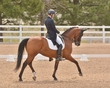 DRESSAGE FOR CURE SATURDAY 2018 1046.jpg