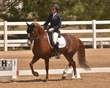 DRESSAGE FOR CURE SATURDAY 2018 2197.jpg