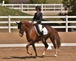 DRESSAGE FOR CURE SATURDAY 2018 2201.jpg
