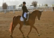 ESTES PARK DRESSAGE FRI AND SAT 010.jpg