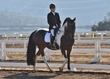 ESTES PARK DRESSAGE FRI AND SAT 5451.jpg