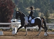 ESTES PARK DRESSAGE FRI AND SAT 5458.jpg