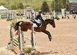 JUNE 1 HORSE PARK 1716.jpg