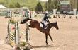 JUNE 1 HORSE PARK 1717.jpg