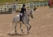 JUNE 1 HORSE PARK 1783(1).jpg