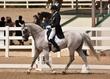 JUNE 1 HORSE PARK 1971.jpg