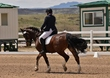 dressage for cure sat afternoon 096.jpg