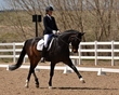 dressage for the cure 2019 1801.jpg