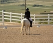 dressage in the rockies 3 and 4 1004.jpg
