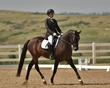 dressage in the rockies 3 and 4 1048.jpg