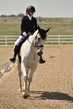 dressage in the rockies 3 and 4 1128.jpg
