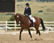 dressage in the rockies 3 and 4 2869.jpg