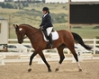 dressage in the rockies 3 and 4 2872.jpg