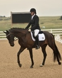 dressage in the rockies 3 and 4 3788.jpg