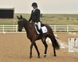 dressage in the rockies 3 and 4 3797.jpg