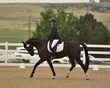 dressage in the rockies 3 and 4 3846.jpg