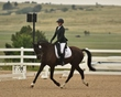 dressage in the rockies 3 and 4 3849.jpg