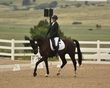 dressage in the rockies 3 and 4 3850.jpg