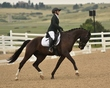 dressage in the rockies 3 and 4 3854.jpg