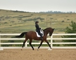 dressage in the rockies 3 and 4 4000.jpg