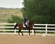 dressage in the rockies 3 and 4 4002.jpg