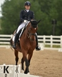dressage in the rockies 3 and 4 4006.jpg