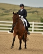 dressage in the rockies 3 and 4 4854.jpg