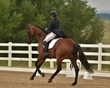 dressage in the rockies 3 and 4 4865.jpg