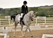 dressage in the rockies 3 and 4 6195.jpg