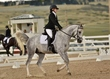 dressage in the rockies 3 and 4 6203.jpg