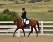 dressage in the rockies 3 and 4 6284.jpg