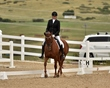 dressage in the rockies 3 and 4 6289.jpg