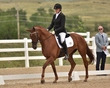 dressage in the rockies 3 and 4 6298.jpg