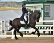 dressage in the rockies fall show 1007.jpg