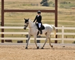 dressage in the rockies fall show 1014.jpg