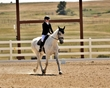 dressage in the rockies fall show 1019.jpg