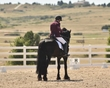 dressage in the rockies fall show 1183.jpg